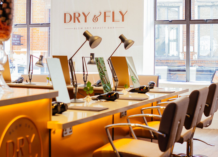 dry-and-fly