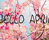 This Month I'm…..