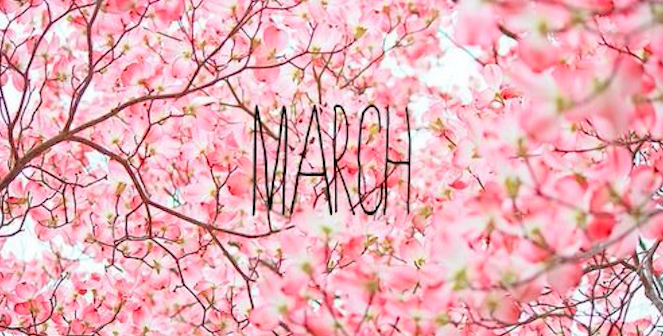This Month I'm……